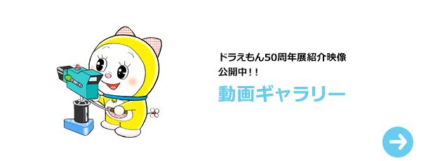 bnr_videog_jp